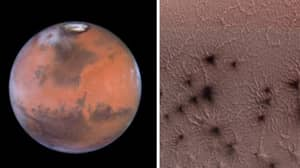NASA Has Released Photos Of 'Spiders' Crawling On Mars