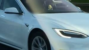 Man Banned From Driving For Sitting In Passenger Seat With Tesla On Autopilot