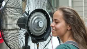 Sleeping With A Fan On Through The Night Could Be Terrible For You