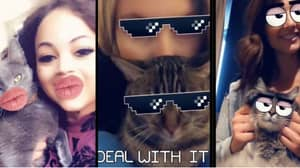 Snapchat Now Has Cat Lenses So Your Pet Can Share The Limelight