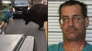 Tourist Who Got Out Of Car To Taunt Bison Has Been Arrested