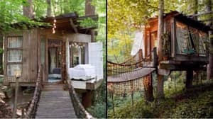 There's A Treehouse AirBnB That Will Make You Want to Book a Holiday Instantly