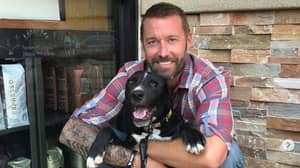 Meet The Man Given Months To Live Who Turned It Around For His Dogs