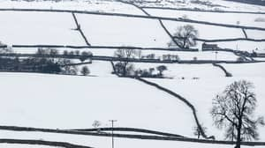 Bookies Have Slashed Odds For A White Christmas For Parts Of UK
