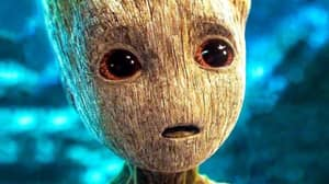 Botanist Explains How Baby Groot Lived On In 'Guardians Of The Galaxy'
