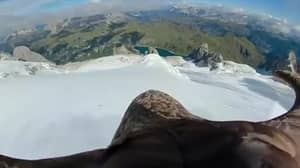 Eagle Flight Footage Highlights Impact Of Climate Change In The Alps