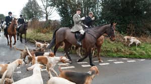 Boxing Day Hunts Went Ahead Despite Covid Restrictions