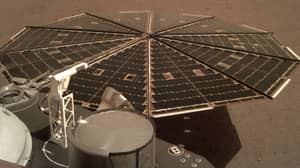 InSight Lander Sends Back First Ever Recording Of Sounds Of Wind On Mars