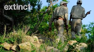 ​The Heroes Who Risk Their Lives To Protect Endangered African Wildlife From Poachers