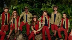 Fans Want Version Of I'm A Celebrity With Ordinary People As Contestants