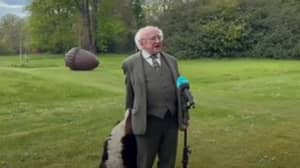 ​President Of Ireland's Dog Steals The Show During TV Interview