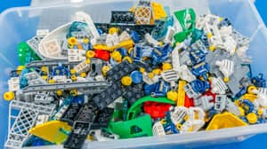 Scientists Have Found Out How Long It Takes To Poop Out A Piece Of Lego