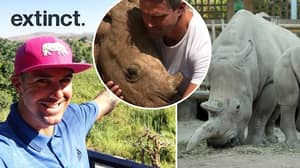 ​Kevin Pietersen: Rhino Extinction Isn't Going To Happen, Not On My Clock