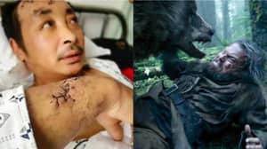 Villager Hospitalised After 'Revenant'-Style Bear Attack