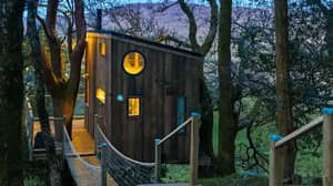 There's A Stunning Treehouse Airbnb In Donegal Waiting For You After Lockdown