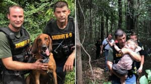 Police Bloodhounds Find Missing Three-Year-Old Boy In Less Than Half An Hour