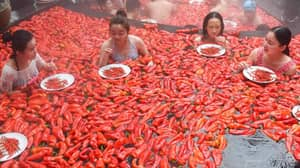 A Hot Chilli Eating Contest Is Coming To Sydney Next Week