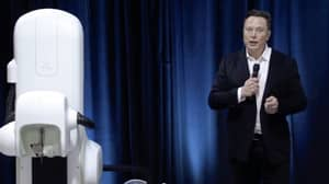 Elon Musk Presents Pig Implanted With His New Neuralink Brain Chip