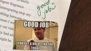Teacher Uses Gordon Ramsay Memes To Grade Homework