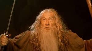 GoT Creator George RR Martin Says Gandalf Would 'Kick Dumbledore's A**'