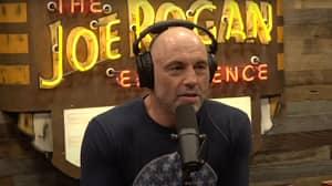 Joe Rogan Is Sick Of People Mocking Him For Taking Horse Medicine