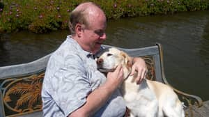 The 9/11 Dog That Led Blind Owner And 30 Other People To Safety