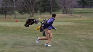 Golfer Gets Attacked By Goose And The Photos Are Too Good