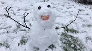 Mum In Stitches After Children Use Great-Grandma's Dentures To Build Creepy Snowman