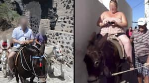 Greek Government Bans Heavy Tourists From Riding On Donkeys