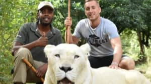 Footballer Criticised For 'Pulling' On Lion's Tail In Instagram Photograph