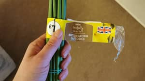 Woman's Missing Daffodils Found In Fridge After Husband Mistook Them For Spring Onions