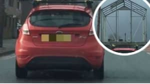 Driver Spotted With Greenhouse Strapped On To The Roof Of Car