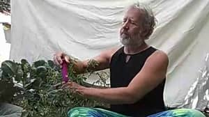 Farmer Reveals He Tickles His Plants With A Vibrator To Improve His Crop