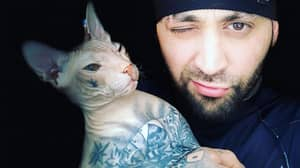 Heavily Tattooed Cat Jumps Out Of Owner's Car Window And Escapes