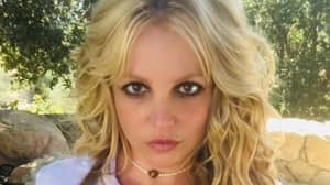 Britney Spears Posts Second Topless Picture As Conservatorship Battle Continues