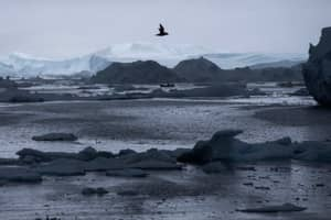 Climate Change Could Be Causing Weird Stuff To Go Down In The Arctic