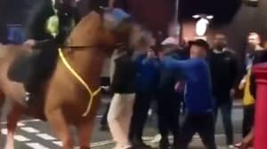 Man Attempts To Punch Police Horse After Portsmouth Vs Southampton Match