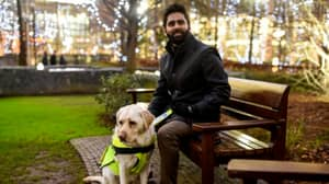 Blind Man Left Without Seat Releases Video Showing How Hard His Guide Dog Works