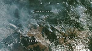 Amazon Fires Visible From Space And Causing Blackouts In Sao Paulo