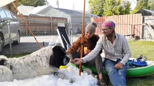 Snow Delivered Specially For Winter-Loving Dog To Have Her Last Play Before She Passed Away
