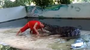 Terrifying Moment Crocodile Clamps Jaws Down On Zookeeper's Head