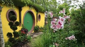 There's A Fairy Fort Oasis With A Hobbit House Waiting For You In Limerick