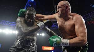 Tyson Fury Responds To Deontay Wilder's 'Congratulations' Message