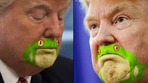 Donald Trump With A Frog Painted Over His Mouth Is Brilliant