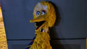 Thieves Return $160,000 Big Bird In Adelaide And Leave Weird Note To Police