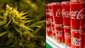 Coca-Cola Preparing To Make Cannabis-Infused Drink For The First Time Ever