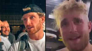 Jake Paul Mocks Guy Who Approached His Brother Logan For Job And Got Rejected