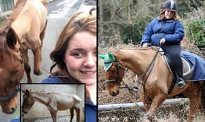 Rider Who Rode Starved Thoroughbred Has Been Banned From Keeping Horses