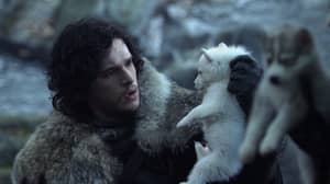Let's Break Down Why Jon Snow Isn't Hanging Out With Ghost Any More In 'GOT'