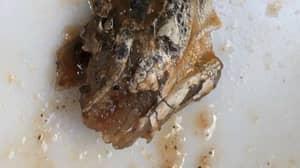 Mum Shocked To Find 'Lizard Head' In Her Lidl Vegan Bolognese